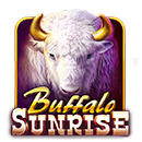buffalo sunrise machine